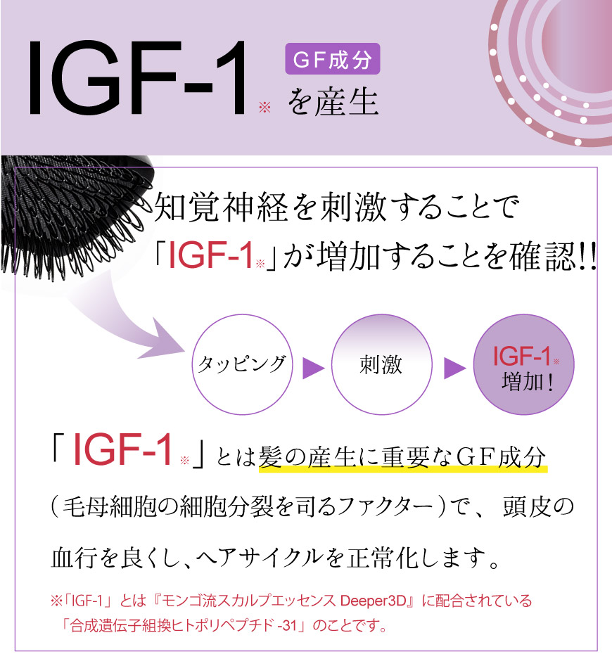 IGF-1を産生
