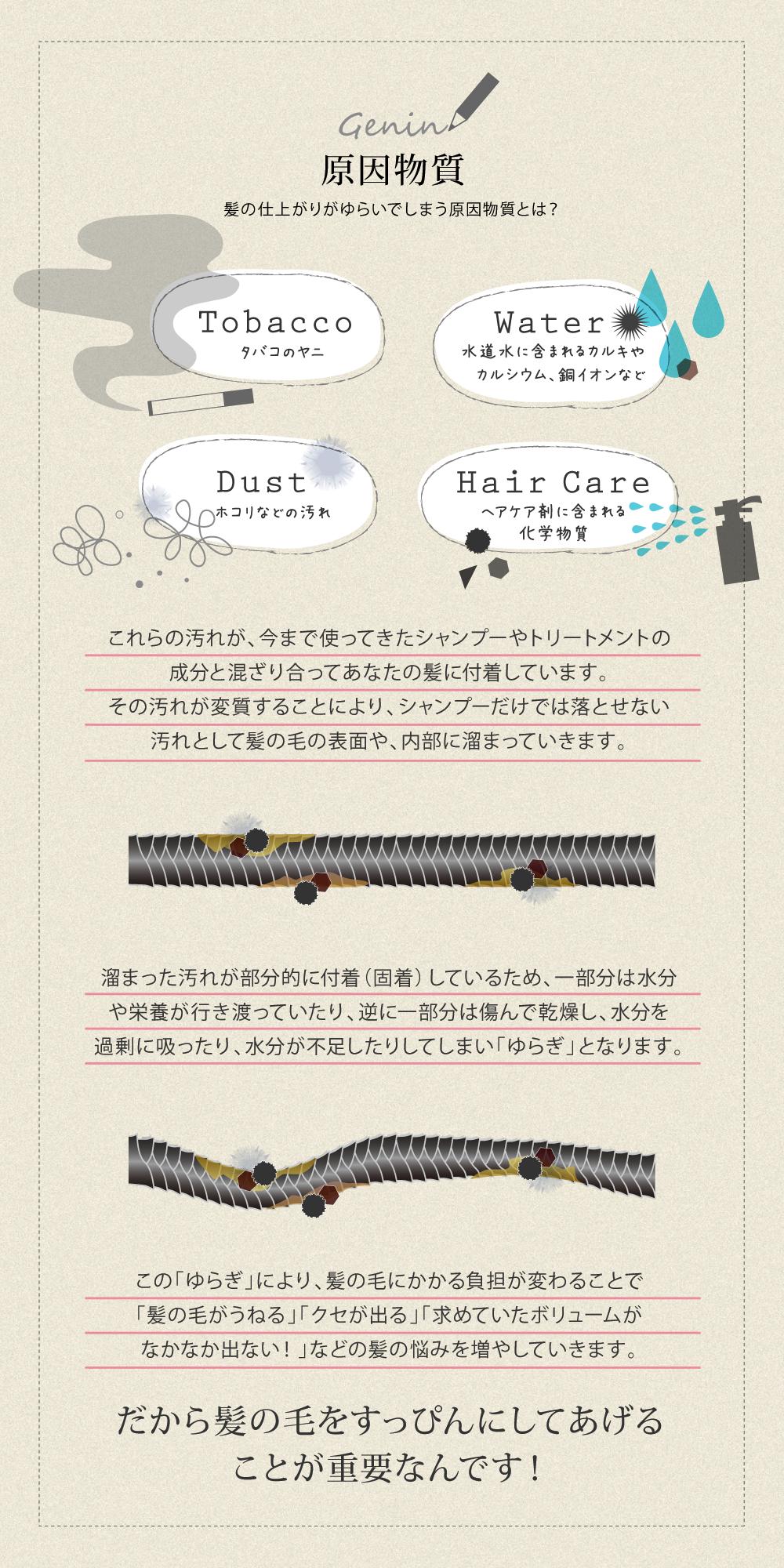 タバコのヤニ、ホコリや汚れ、ヘアケア剤に含まれる化学物質、水道水に含まれるカルキやカルシウム、銅イオンなどが、あなたの髪の仕上がりがゆらいでしまう原因。でも、原因となる物質をしっかりクレンジングできれば髪のトラブルを解消して、あなたのなりたい髪になることができます!