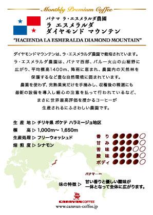 パナマ ダイヤモンドマウンテン