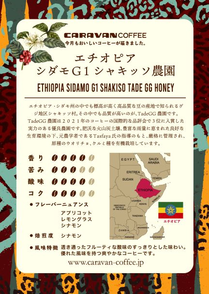 エチオピア シダモG1シャキッソ