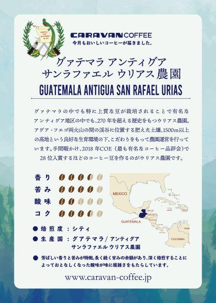 グアテマラ アンティグア ウリアス農園