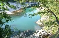 庄川系のきれいな水に育まれた味わい