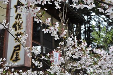 okubojaya_01