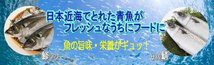 魚のフード