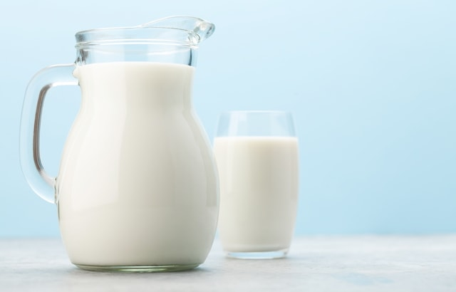 シニア犬猫とミルク・乳製品