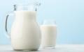 シニア犬・猫にもミルク・乳製品
