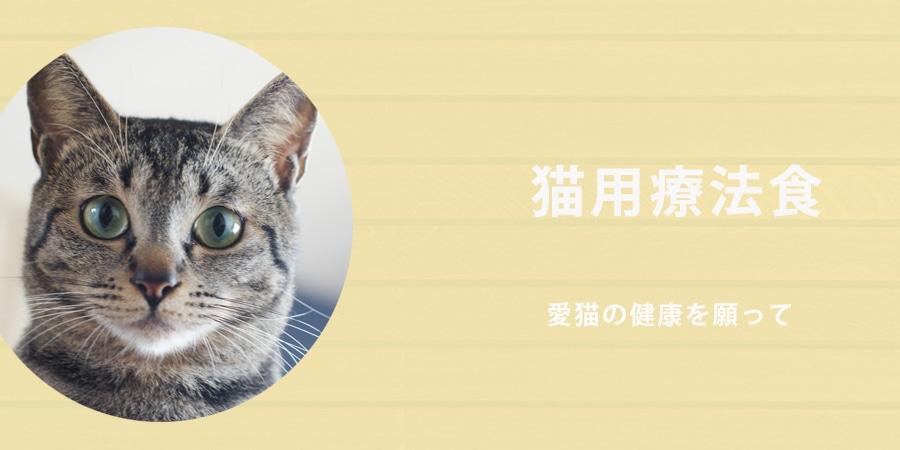 猫用療法食