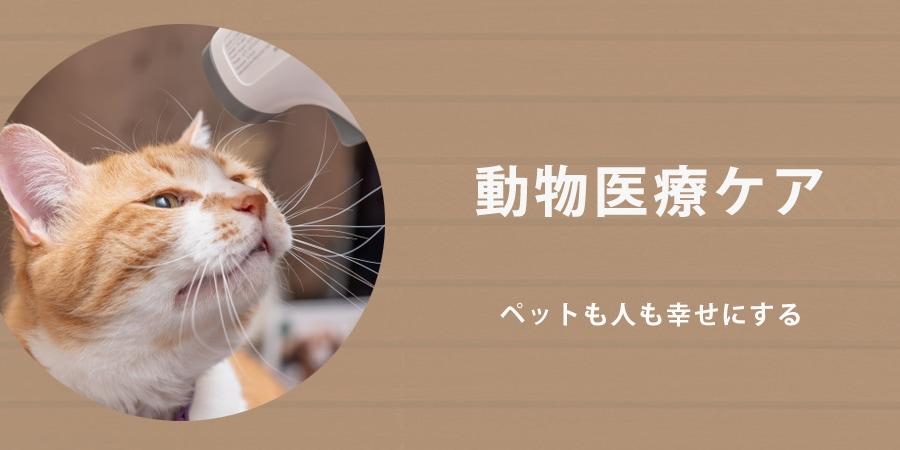 動物医療ケア
