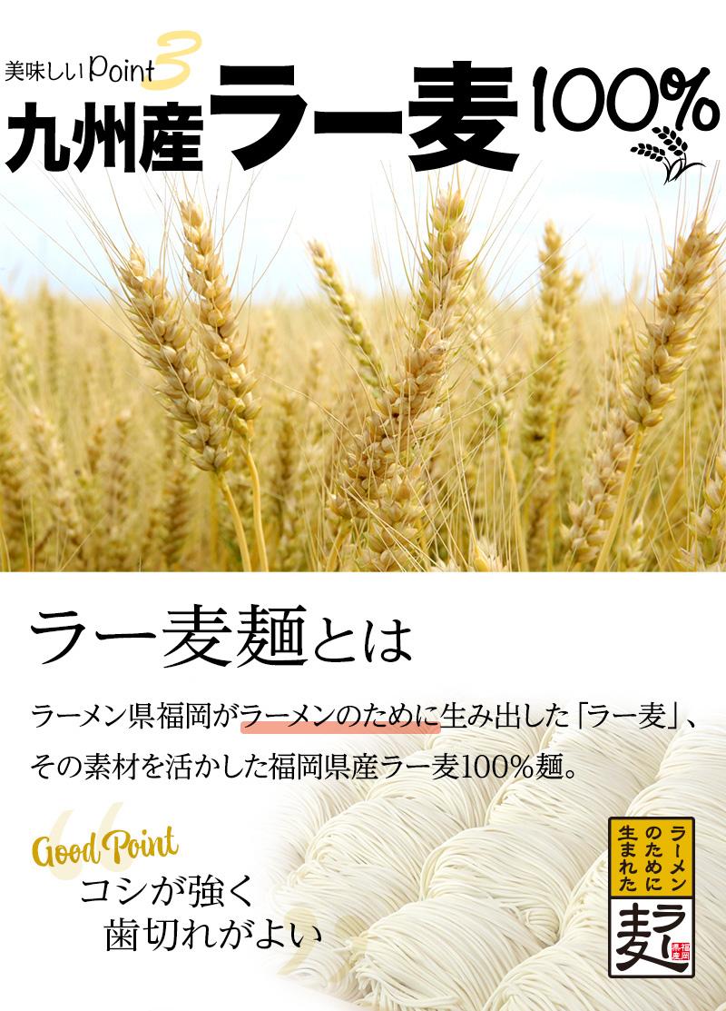 美味しいポイント3 九州産ラー麦100%麺|ラーメン県福岡がラーメンのために生み出した「ラー麦」。その素材を活かした福岡県産ラー麦100%麺。コシが強く、歯切れがよいのが特長で、お鍋の〆にもよく合います。