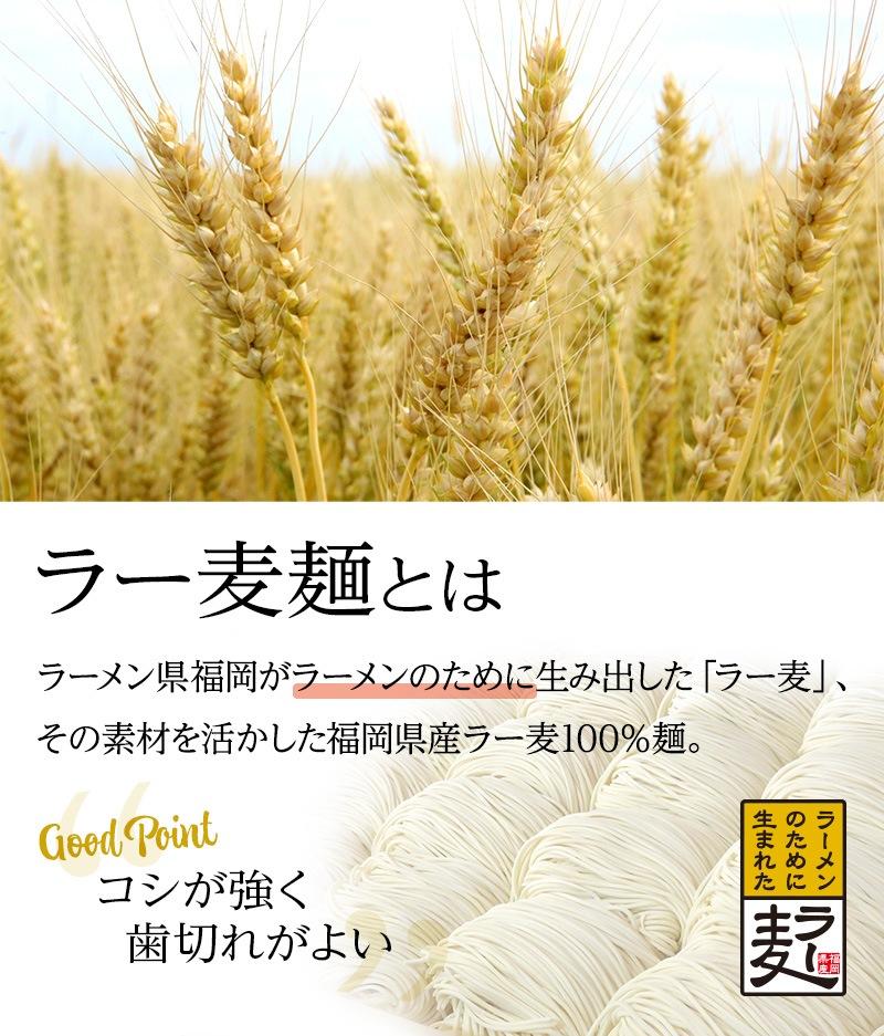 【ラー麦麺とは】ラーメン県福岡がラーメンのために生み出した「ラー麦」、その素材を活かした福岡県産ラー麦100%麺。コシが強く歯切れがよいのが特長です。