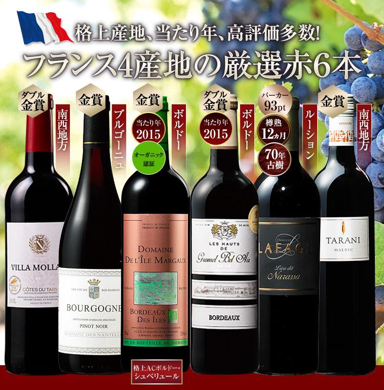 ソムリエ厳選フランス各地赤ワイン6本セット
