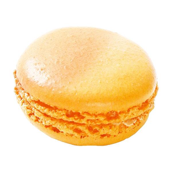 Orange-Sanguine オランジュサンギィーヌ