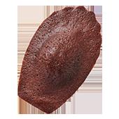Madeleine Chocolat マドレーヌ ショコラ