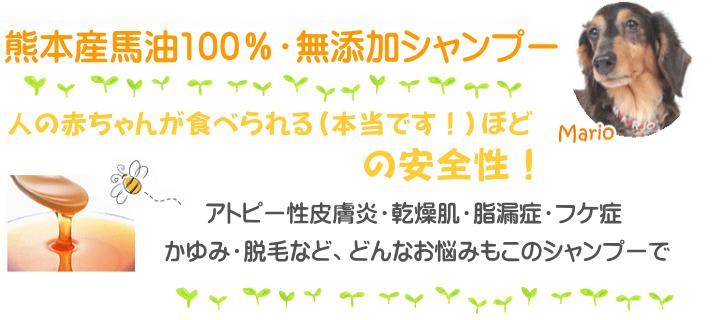 熊本産馬油100%・無添加シャンプー