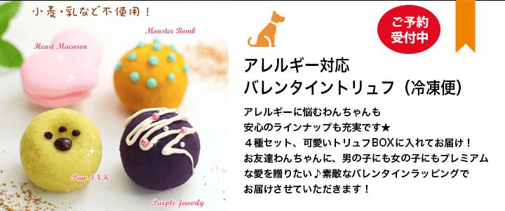 ワンちゃんのクリスマスケーキ&ディナー予約開始!