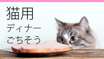 猫のディナー・ごちそう