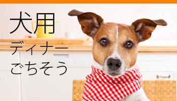 犬のディナー・ごちそう