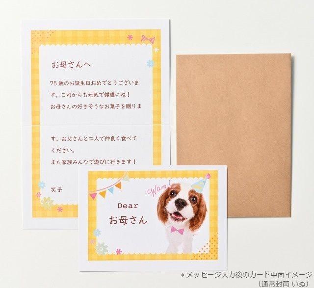 メッセージカード_いぬ