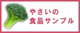 野菜の食品サンプル