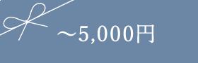 〜5,000円