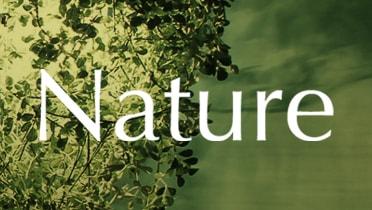 Nature di classe