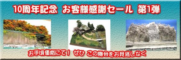 10周年記念セール第1弾 超特価にて!