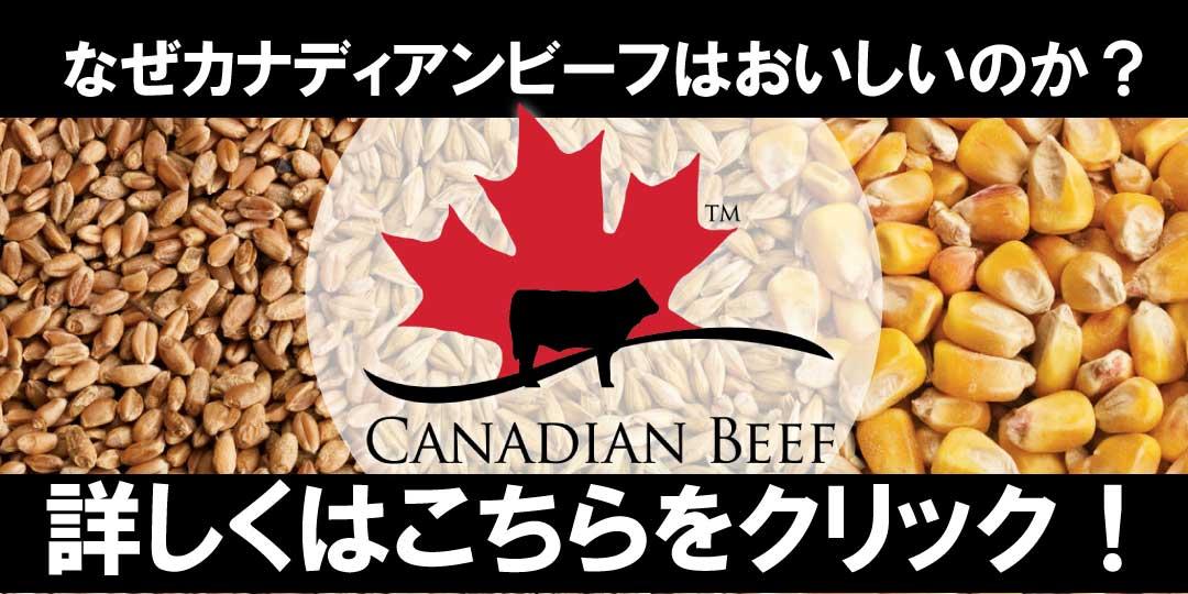 カナダビーフについてはクリック!
