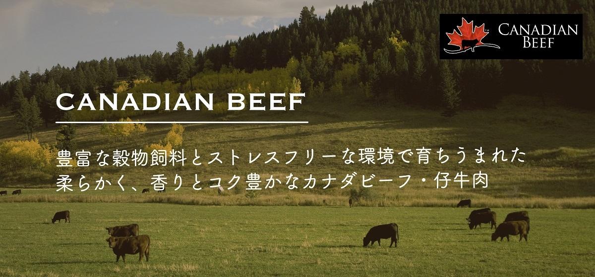なぜカナダビーフはおいしいの?