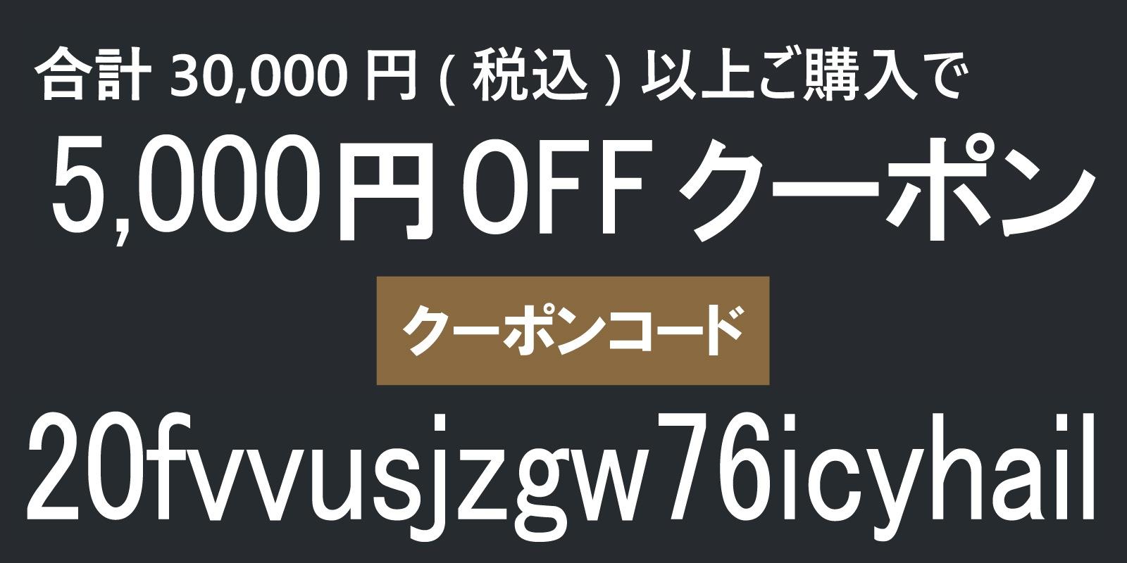 ★3万円以上お買い物に、今すぐクーポンご利用頂けます★【20fvvusjzgw76icyhail】