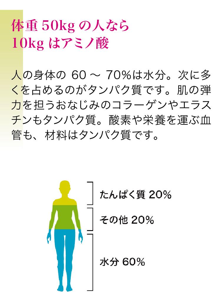 体重50kgの人なら10kgはアミノ酸