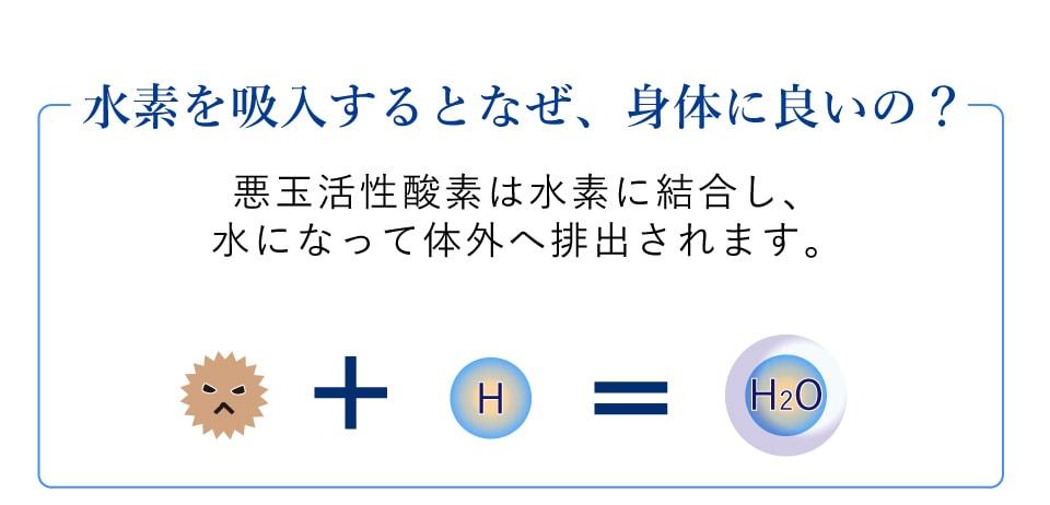 水素を吸入するとなぜ、身体に良いの?悪玉活性酸素は水素に結合し、水になって体外へ排出されます。