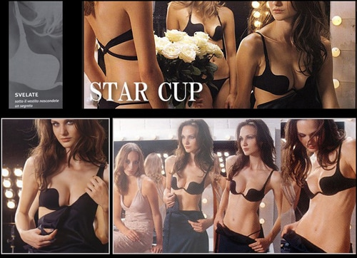 star cup bra 1313