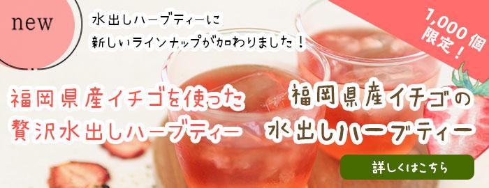 福岡県産イチゴの水出しハーブティー