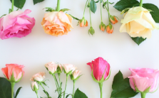 花材の選び方