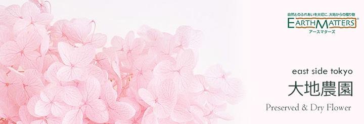大地農園 Preserved & Dry Flower(プリザーブドフラワー&ドライフワらー)
