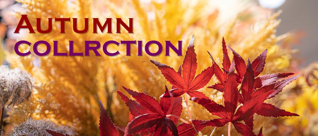 秋_Autumn