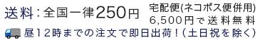 送料:全国一律250円(6,500円以上で送料無料)