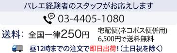 全国一律250円(6,500円以上で送料無料)