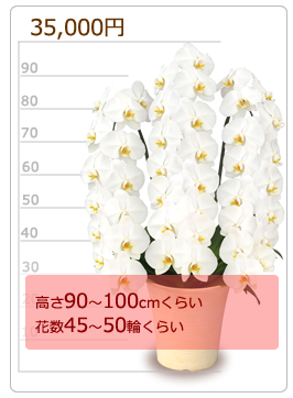 35000円