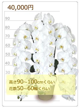 40000円