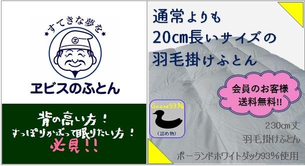 230�羽毛掛けふとん!!〜