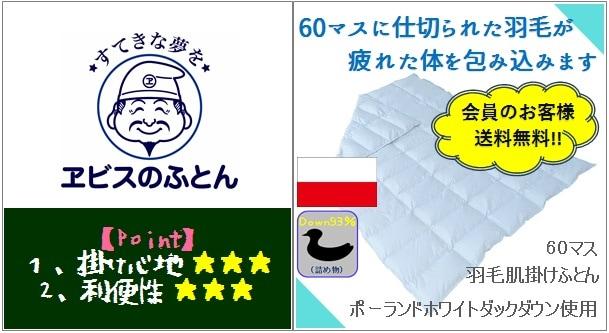 60マス羽毛肌掛けふとん〜