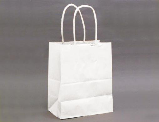 紙手提げ袋T-2白