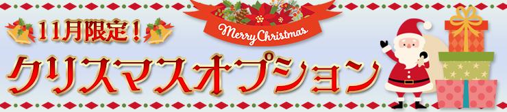11月限定!クリスマスオプション開催中!