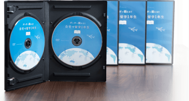 DVDの内容例(一部)