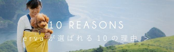 10 resons