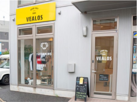VEALOS -神奈川県-