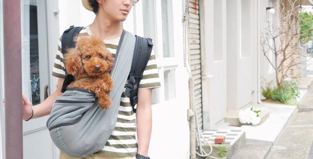 犬用キャリー スレートグレー