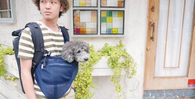 メッシュ犬用キャリー ネイビー