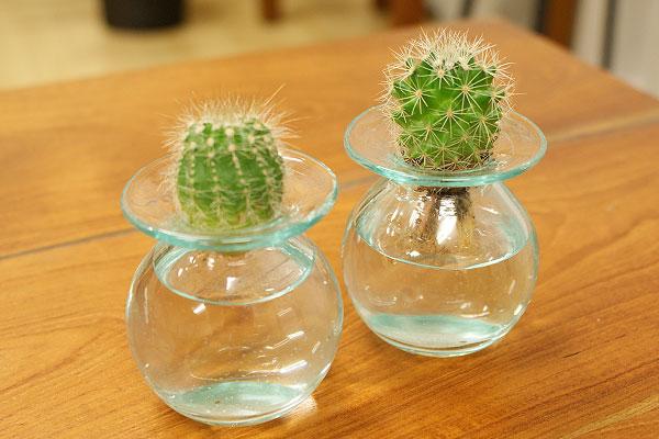 一輪挿し 花瓶 ガラス フラワーベース おしゃれ